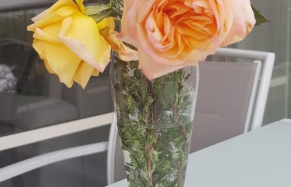 מה בין ורדים לעסקים?